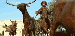 frisco_texas_fence_image